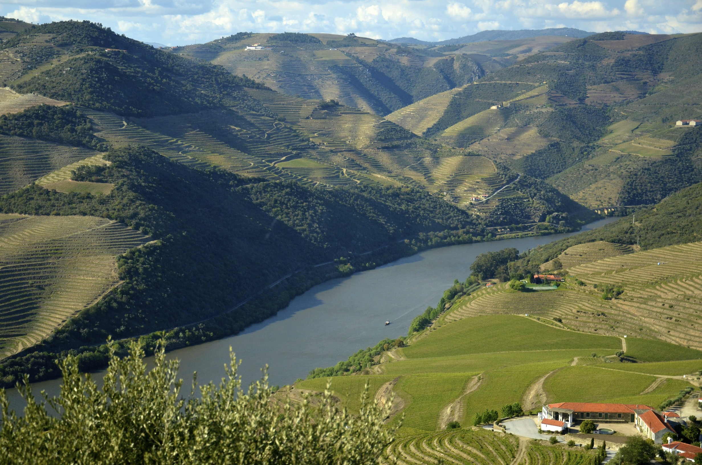Planning A Visit To The Douro Valley Four Great Places